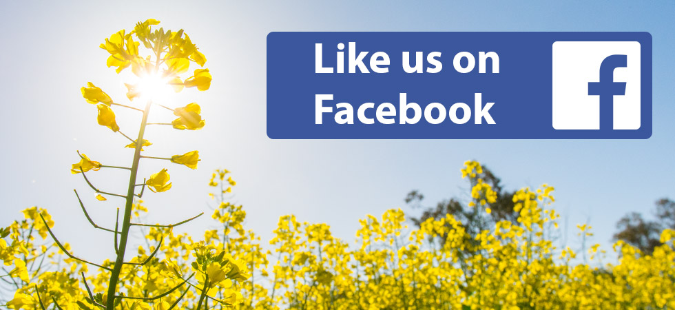 Follow Tobin No-Till on facebook | Click Here